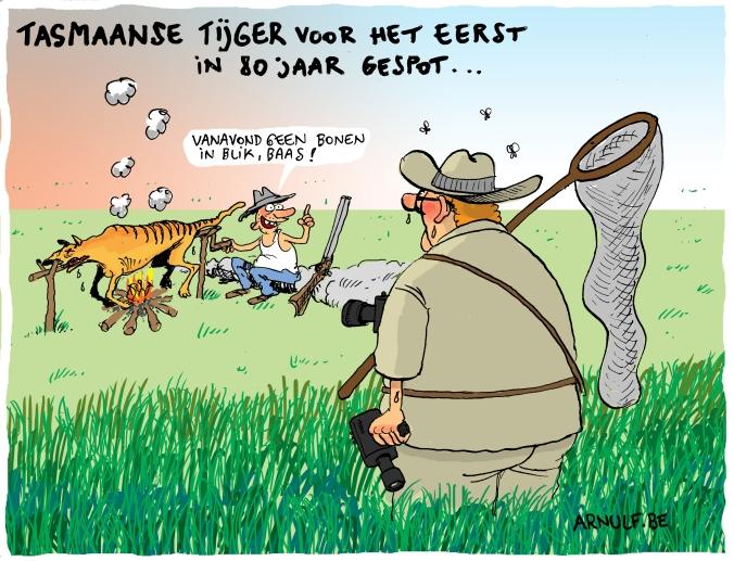 tasmaanse tijger.def